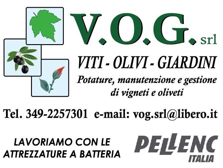 Logo VOG2
