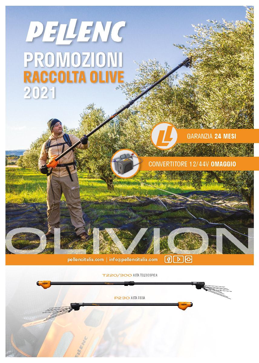 Promo-olivion-Whatsapp